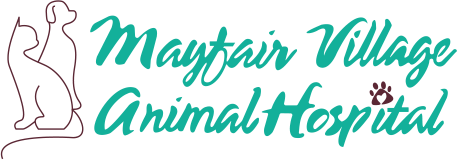 Mayfair Village Animal Hospital